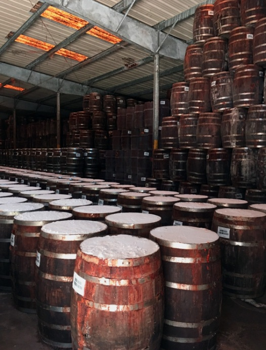 Aging barrels in warehouse