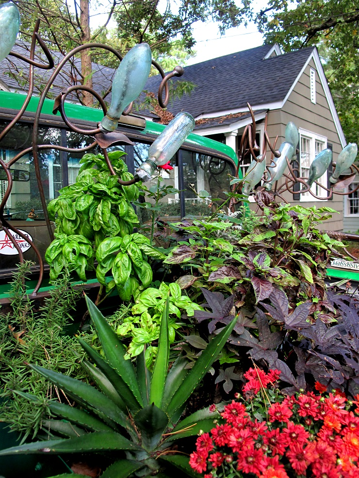 All Gardens Need Color and Textures