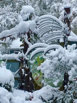 Felder Front Garden in Snow