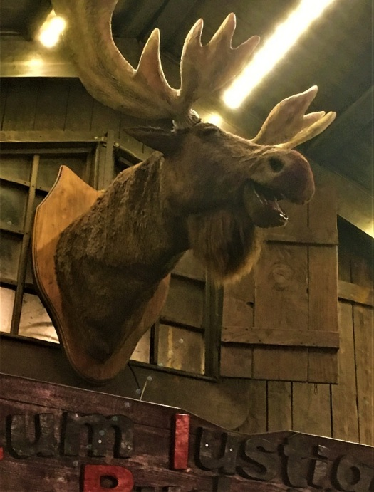 Singing Moose Head