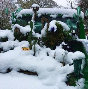 Truck Garden Snowed In