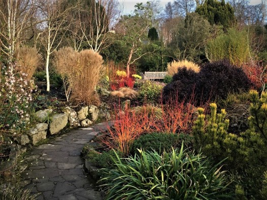 Bodnant Winter Garden, Wales