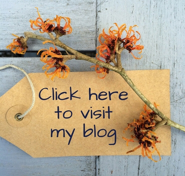Label reading 'visit my blog' with witch hazel