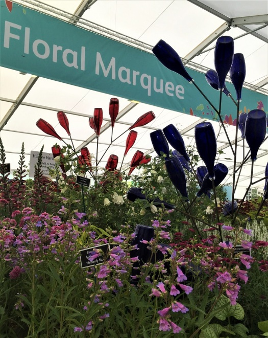 Bottle Trees Prominent at RHS Chatworth Flower Show
