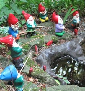 Frolicking in the Gnome Reserve