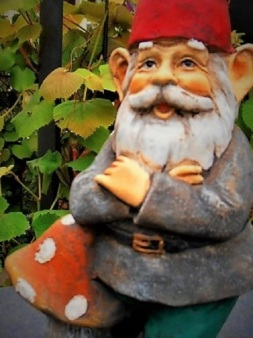 First gnome to be welcomed at the Chelsea Flower Show