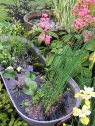 Small water features are found in nearly every display