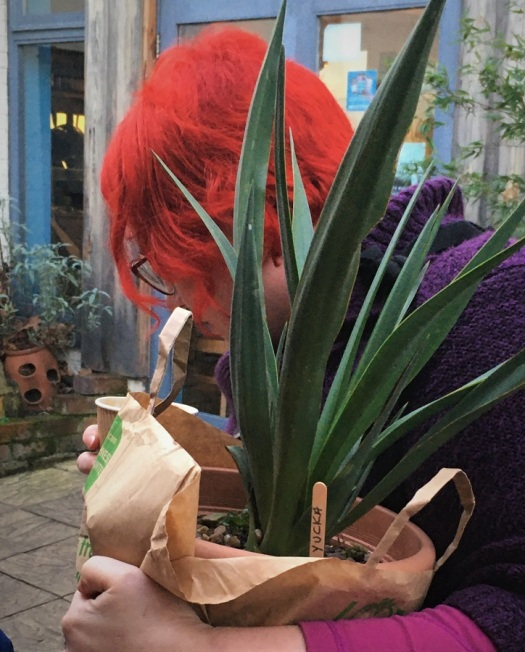 Interesting Plants, Interesting People