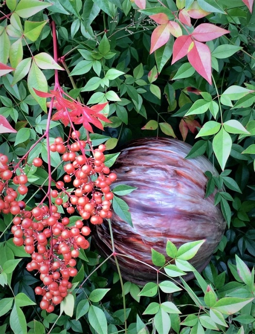 Bowling Ball and Nandina
