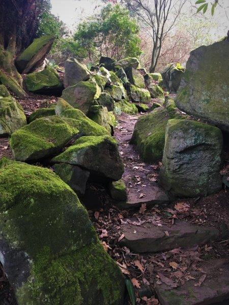 Creative Rockery Walk