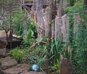 My stumpery with newly added Spanish moss