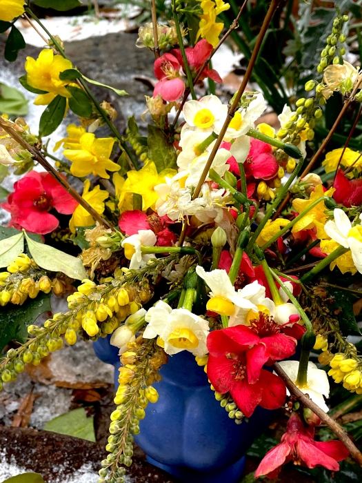 bouquet of winter flowers of the South